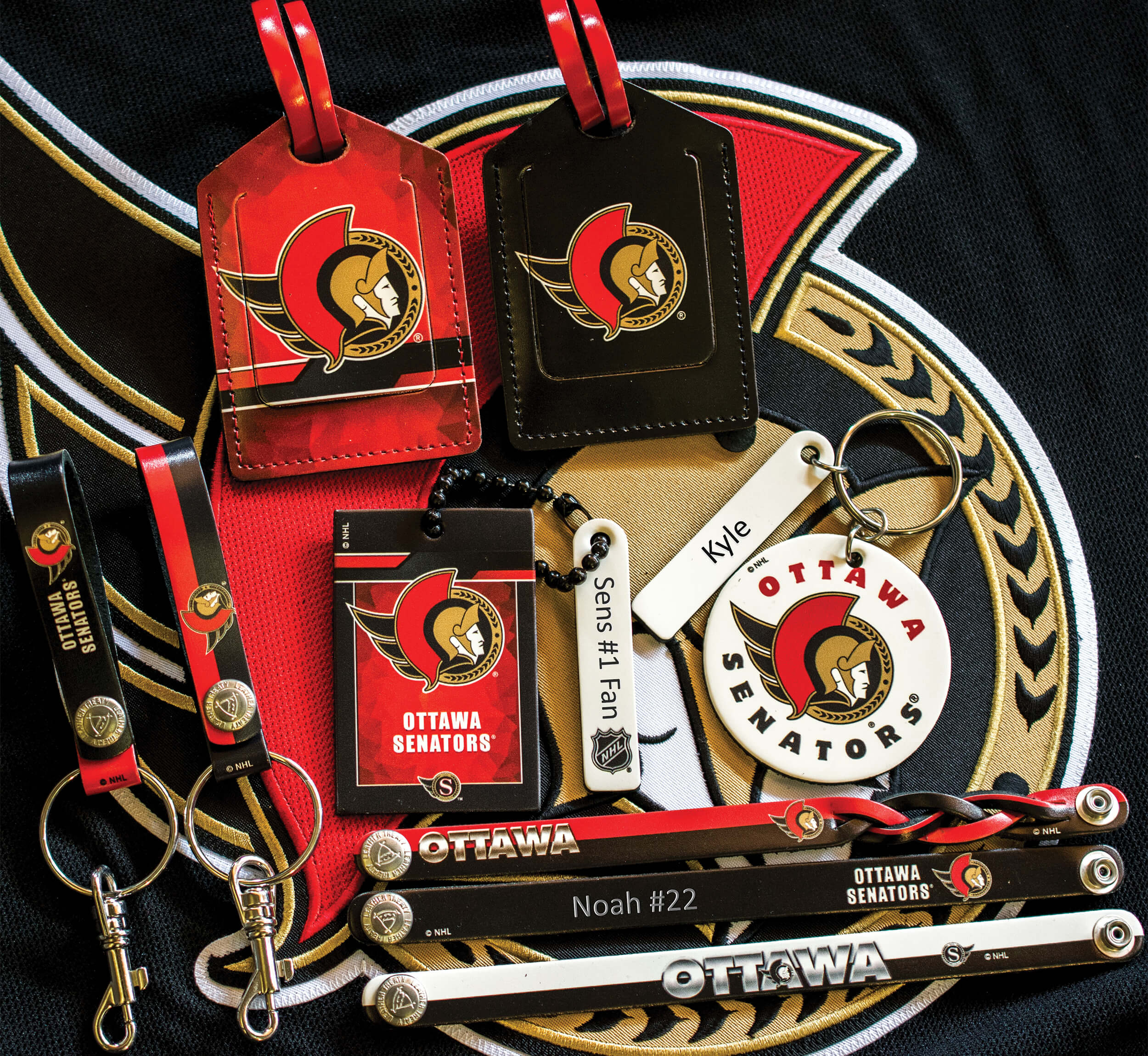 <p>NHL Collection Of Engraving Examples Ottawa Senators</p>